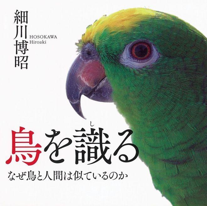学級目標 デザイン 鳥